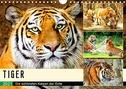 Tiger. Die schönsten Katzen der Erde (Wandkalender 2021 DIN A4 quer)