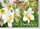 Die Königslilie (Wandkalender 2022 DIN A2 quer)