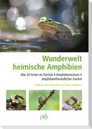 Die Wunderwelt der heimischen Amphibien