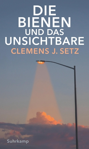 Setz, Clemens J.. Die Bienen und das Unsichtbare.