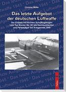 Das letzte Aufgebot der deutschen Luftwaffe