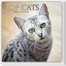 Top Cats - Top-Katzen 2022 - 16-Monatskalender