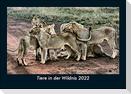 Tiere in der Wildnis 2022 Fotokalender DIN A5