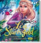 Lia Sturmgold - Teil 3: Unsichtbarer Elfenzauber