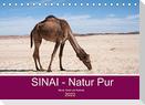 Sinai - Natur Pur (Tischkalender 2022 DIN A5 quer)