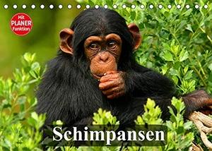 Stanzer, Elisabeth. Schimpansen (Tischkalender 2022 DIN A5 quer) - Des Menschen nächster Verwandter aus Mittelafrika (Geburtstagskalender, 14 Seiten ). Calvendo, 2021.