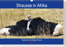 Strausse in Afrika (Wandkalender 2021 DIN A3 quer)