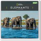 National Geographic Elephants - Elefanten 2022