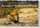 Faszination Kruger National Park (Wandkalender 2022 DIN A3 quer)