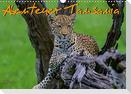 Abenteuer Tansania, Afrika (Wandkalender 2021 DIN A3 quer)