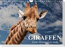 Giraffen. Dem Himmel so nah (Wandkalender 2022 DIN A4 quer)