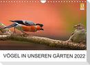 Vögel in unseren Gärten 2022 (Wandkalender 2022 DIN A4 quer)