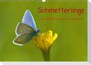 Schmetterlinge-Auf den Wiesen unserer Heimat (Wandkalender 2021 DIN A3 quer)