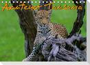 Abenteuer Tansania, Afrika (Tischkalender 2021 DIN A5 quer)