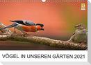 Vögel in unseren Gärten 2021 (Wandkalender 2021 DIN A3 quer)