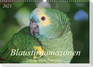 Blaustirnamazonen - Papageien in Paraguay (Wandkalender 2021 DIN A3 quer)
