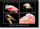 Vögel im Fokus 2021 (Tischkalender 2021 DIN A5 quer)