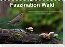 Faszination Wald. Waldimpressionen aus Nordhessen von Lutz Klapp (Wandkalender 2022 DIN A3 quer)