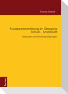 Sozialraumorientierung im Übergang Schule - Arbeitswelt