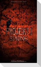 Spring - Projekt I