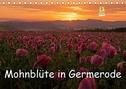 Mohnblüte in Germerode (Tischkalender 2021 DIN A5 quer)