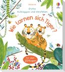 Erstes Aufklappen und Verstehen: Wie tarnen sich Tiger?