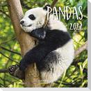 Pandas 2022