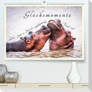 Glücksmomente Glücks-Zitate zu Fotos der großartigen südafrikanischen Tierwelt (Premium, hochwertiger DIN A2 Wandkalender 2022, Kunstdruck in Hochglanz)