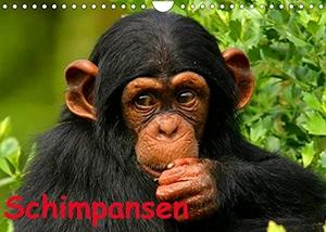 Stanzer, Elisabeth. Schimpansen (Wandkalender 2022 DIN A4 quer) - Des Menschen nächster Verwandter aus Mittelafrika (Monatskalender, 14 Seiten ). Calvendo, 2021.