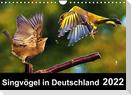 Singvögel in Deutschland (Wandkalender 2022 DIN A4 quer)