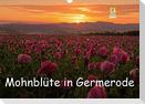 Mohnblüte in Germerode (Wandkalender 2021 DIN A3 quer)