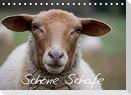 Schöne Schafe (Tischkalender 2022 DIN A5 quer)