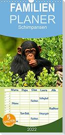 Schimpansen (Wandkalender 2022 , 21 cm x 45 cm, hoch)