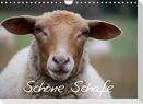 Schöne Schafe (Wandkalender 2022 DIN A4 quer)