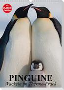 Pinguine. Wackeln im Thermo-Frack (Wandkalender 2021 DIN A3 hoch)