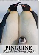 Pinguine - Wackeln im Thermo-Frack (Wandkalender 2021 DIN A2 hoch)