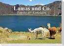 Lamas und Co. Familie der Kameliden (Wandkalender 2022 DIN A3 quer)