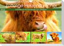 Zottelige Herzensbrecher. Schottische Hochlandrinder zum Verlieben (Wandkalender 2022 DIN A4 quer)