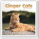 Ginger Cats - Rothaarige Katzen 2022 - 18-Monatskalender