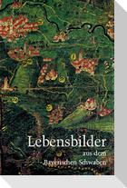 Lebensbilder aus dem Bayerischen Schwaben 15