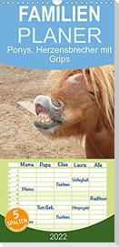 Ponys. Herzensbrecher mit Grips (Wandkalender 2022 , 21 cm x 45 cm, hoch)