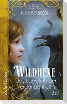Wildhexe 05 - Das Labyrinth der Vergangenheit