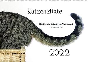 Dogmoves. Katzenzitate 2022 (Wandkalender 2022 DIN A2 quer) - Katzenportraits mit Zitaten (Monatskalender, 14 Seiten ). Calvendo, 2021.