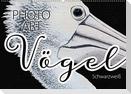 Vögel Schwarzweiß Photo Art (Wandkalender 2021 DIN A2 quer)