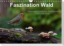 Faszination Wald. Waldimpressionen aus Nordhessen von Lutz Klapp (Wandkalender 2022 DIN A4 quer)