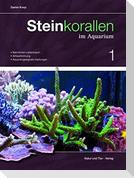 Steinkorallen im Aquarium 01