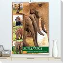 SÜDAFRIKA Wild-Tiere im Addo Elephant Park (Premium, hochwertiger DIN A2 Wandkalender 2022, Kunstdruck in Hochglanz)