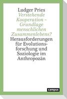 Verstehende Kooperation