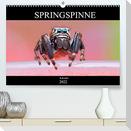 Springspinne Kalender (Premium, hochwertiger DIN A2 Wandkalender 2022, Kunstdruck in Hochglanz)