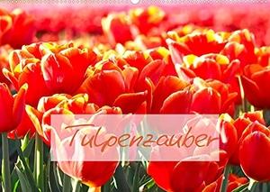 Meyer@Stimmungsbilder1, Marion. Tulpenzauber (Wandkalender 2022 DIN A2 quer) - Zauberhafte Tulpen machen gute Laune (Monatskalender, 14 Seiten ). Calvendo, 2021.